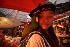 2 Luohu Laocun 1 - Fit Bird (A China) Tags: china street girl chinese parrot chinadigitaltimes shenzhen streetmarket chinesegirl luohu
