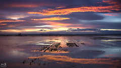 Albufera de Valencia_1. Feb2015 (MSB.Photography) Tags: sunset sky españa nature water valencia clouds reflections landscape atardecer spain sony paisaje cielo hdr reflejos albufera nuebes nex7