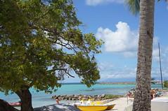 Saint-francois (Pierre Le Provost) Tags: blue sky sun port soleil boat pierre le bateau plage palmier guadeloupe provost saintfrancois pierreleprovost leprovostpierre