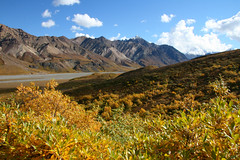 Indian summer in Alaska (leo_phel) Tags: blue autumn summer sky mountains beautiful alaska trekking landscape outdoor indian awesome scenic valley stunning mountaineering leafes indiansummer