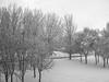 Past (pinhead1769) Tags: snow blancoynegro blackwhite nieve alava euskadi vitoriagasteiz paísvasco bwdreams
