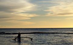 #Oahu #Hawaii #ParadiseCove #Luau () Tags: 09242011 oahu hawaii vaction luau party paradisecove lau feast friends honokaihale paradisecoveluau hawaiianparty hawaiianmusic kapolei leewardcoast makaha northpacificocean thegatheringplace gatheringplace 10days waikiki honolulu island isle paradise aloha mahalo hawaii2011 lei hawaiian rtw worldtraveler roundtheworld vacation vacanze holiday globetrotter   le  insel isla   o         canoe sunset palmtrees ewabeach southoahu northpacific