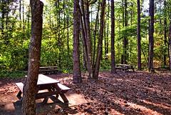 Picnic area at Kennesaw Mountain National Battlefield Park, Marietta, Georgia (BDM17) Tags: park trees mountain ga georgia table picnic farm national area battlefield marietta kolb kennesaw