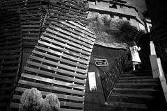 Walking up the stairs (Henry Sudarman) Tags: people blackandwhite bw ir samsung korea traveling humaninterest hitamputih v93 samsungnx nx10 harlimir