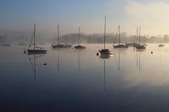 Mist (rogermarcel) Tags: sun mist sunrise river landscape boats duck bateaux rivire paysage canard brume waterscape rogermarcel