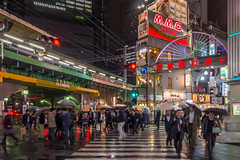 Shinbashi Rain, Tokyo (roevin | Urban Capture) Tags: city light people woman signs reflection rain japan skyline night umbrella buildings dark advertising lights evening crossing view nightshot top district pedestrian illuminated business busy jp signage maze minatoku busiest tkyto