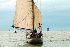 063 Ostrea Rose Classic Race - Ann Vanoverschelde IMG_6207