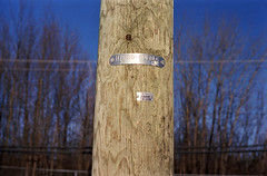 Hydro Quebec (Armin Schuhmann) Tags: auto wood old trees sky canada color tree film electric analog vintage lens outdoors prime haze wire focus fuji dof post quebec bokeh superia montreal f14 uv ishootfilm scan pole mc automn negative 55mm hydro filter 400 m42 pelicula normal analogue manual filme fujica st705 400asa argentique filmscan chinon planar analogic xtra selfdeveloped screwmount c41 filmphotography 2015 unicolor shootfilm filmphoto filmisnotdead heliopan analogo believeinfilm buyfilmnotmegapixels