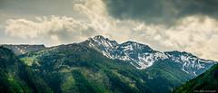 ..:: snow on the mountains ::.. (bora_binguel) Tags: schnee trees mountain snow tree nature berg landscape austria sterreich urlaub natur berge landschaft bume baum kar da manzara aa avusturya doa aalar bobidigitalphotography