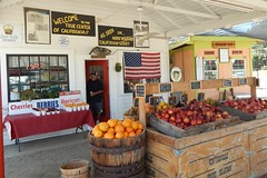 Centerville  Fruit Station (Bob the Real Deal) Tags: fruit peaches fruitstand centerville centervillefruitstation