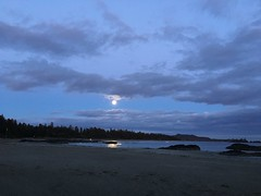 Spectacular view at Chesterman Beach (mary.breakstone) Tags: travel beach fullmoon vancouverisland tofino 2016