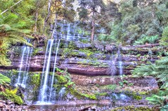 Russell Falls @ Mt Field National Park (myshutterworld) Tags: park tree field landscape waterfall russell under smooth australia down falls mount national tasmania tall tassie hdr silky