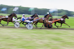 Netherlands - Grasbaan Hilversum 2016 (PhotompNL) Tags: horses en horse netherlands canon cheval eos outdoor mark nederland sigma ii 5d paysbas pferd hilversum herbe niederlande horserace piste paard paarden koers sulky ló סוס équestre paardenrace monté draverij pferden lóverseny harddraverij paardensport coursedechevaux chevalin grasbaanrace grasbaan httpwwwgrasbaanhilversumnl מֵרוֹץסוּסִים