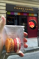 My Hermes Macarons (AntyDiluvian) Tags: street trip paris france cookies chocolate macaroon pastry hermes marais macaron 2015 pierrehermes ruesaintecroixdelabretonnerie