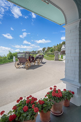 _DSC3200 Grand Hotel View (Charles Bonham) Tags: flowers horse architecture hotel carriage outdoor americanflag geraniums lilacfestival frontporch mackinacisland horsedrawncarriage straitsofmackinac drafthorses thegrandhotel michiganupperpeninsula summerhotel horsetransportation charlesbonhamphotography