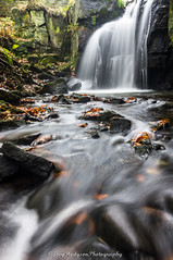 lumsdale's autumn falls (*LOST EVERYTHING ON HERE.. HAVING TO RE-UPLOAD*) Tags: camera uk autumn england wet water leaves landscape photography leaf rocks unitedkingdom sony waterfalls matlock landscapephotography joeyhodgsonphotography