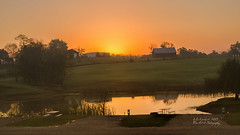 Morning Sunrise in KY ( julev69  1,850,000+ Views- THANK YOU!) Tags: morning sky horses sun lake reflection water beauty sunrise landscape early pond october hills orangesky landscapephotography horsecountry landscapephotographer abovealltherest julev69 julieeverhart