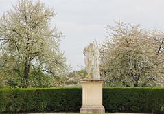 IMG_4460 (Irina Souiki) Tags: parcdesceaux france paris sceaux flowers nature parc park