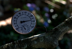 IMG_9465.CR2 (jalexartis) Tags: photography photo contest temperature challenge facebook photochallenge photoadaychallenge junechallenge jalexartis junephotochallenge temperatureprompt tthermometer