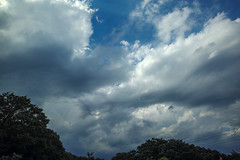 DP0Q2683lr (yoshitoshi ABe) Tags: sky cloud sigma  dp0quattro 20160626