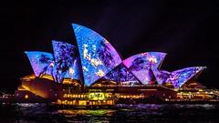 Vivid Sydney-61