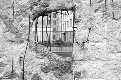 Wall, Berlin (german_long) Tags: germany alemania