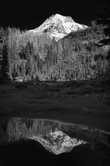 Reflections of Eden (Scott Withers Photography) Tags: oregon edenpark mthood