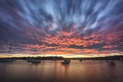 The Local (Crouchy69) Tags: ocean park sea sky seascape motion water clouds sunrise landscape dawn movement long exposure greenwich sydney shell australia