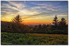 Sunset on Roan Mountain (jeannie'spix) Tags: roanmountain