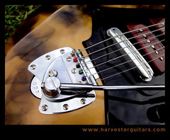 27bridge (Harvester Guitars) Tags: metal neck aluminum guitar guitars australia melbourne luthier harvester wandre