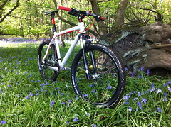 Bluebell woods (moohcowh) Tags: wood blue mountain bike bluebells bells xt woodlands brothers may mtb f3 nic cannondale nobby bros crank schwalbe shimano broxbourne mostlysunny