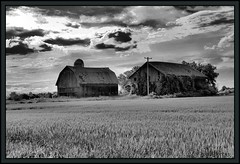 Barns......without  Noble (the Gallopping Geezer '4.4' million + views....) Tags: bw white black building abandoned sign barn rural decay michigan farm country structure faded worn signage geezer 2012 tonemap newlothrope