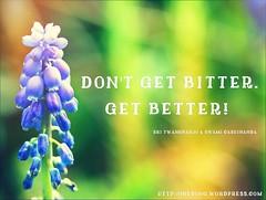 Words Of Wisdom - Get Better (swamicashinanda) Tags: wisdom wisewords analogy wordsofwisdom pearlsofwisdom spiritualguidance spiritualadvice selfhelpadvice selfhelpadvicewordsofwisdompearlsofwisdomspiritualguidanceselfhelpadvice spiritualguidancewordsofwisdompearlsofwisdom swamicashinanda onesongblog sritwangybanjo