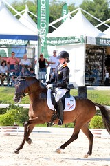 IMG_5059 (RPG PHOTOGRAPHY) Tags: european s pony sultan joelle championships peters 2013 jhaasendonck