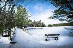 The Bridge (ssgmacdawg12345) Tags: winter snow college nature paul nikon shane adirondacks smiths garlock d3100