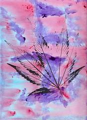 Cannabis Cotton Candy