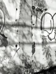 (andre dos santos) Tags: camera new york city nyc newyorkcity blackandwhite newyork 120 film zeiss lens point 645 kodak tmax bronx medium format 100 thebronx ikonta 6x45 folder folding tmax100 xtol tmx hunts tessar huntspoint uncoated ei100