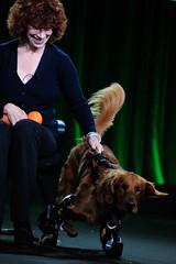 NATURE My Bionic Pet (PBS PressRoom) Tags: california nature animals bionic pasadena tca pbs 2014 prosthetics roofus chrispbacon presstour fredkaufman martinkaufmann lenlucero kathywyer kevinbachar