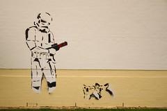 Australian Street Art (Underground Joan Photography) Tags: streetart graffiti stormtrooper koalas koalabears