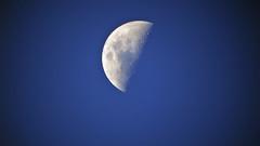 Súbito espanto (Rubens.Campos) Tags: brasília azul brasil df sony céu lua luar rubenscampos hx300