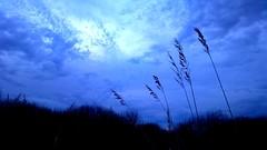 Felh s Nvny (koboldozat) Tags: blue autumn winter sky cloud cold color colors mobile landscape photography nokia symbian beautifull 808 pureview