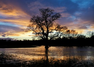 Sunset on Whorfe in flood