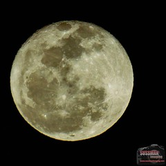 Saturday's full moon (The Suss-Man (Mike)) Tags: moon nature georgia unitedstates gainesville fullmoon hallcounty thesussman sonyslta77 sussmanimaging