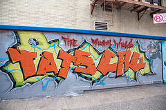The Mural Kings (Sean Davis) Tags: nyc streetart newyork graffiti unitedstates themuralkings