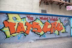 The Mural Kings (Sean Davis) Tags: nyc streetart newyork graffiti unitedstates themuralkings