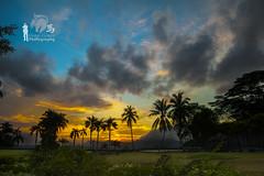 Borneon Suset (Ringgo Gomez) Tags: topseven anawesomeshot malaysianphotographers nikon2470mm nikond700 perfectphotographer sarawakborneo 1001nightsmagiccity mygearandme