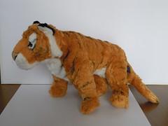 A little cute tiger (ItalianToys) Tags: dog animal animals cane toy toys stuffed tiger plush plushies tigers tigre animali animale giocattoli giocattolo tigri