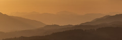 Melvilles monument (rob_dowse) Tags: sunset golden scotland perthshire crieff theknock