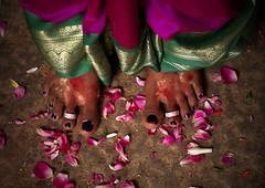 Feet With Rings Of A Just Married Woman Surrounded By Rose Petals At Her Wedding In Trichy, India (Eric Lafforgue Photography) Tags: travel flowers wedding people woman india color colour feet horizontal day culture indoors rings inside tradition hindu hinduism newlywed sari tamilnadu oneperson southindia trichy tiruchi colorimage onewomanonly indianpeople waistup trichinopoly tiruchirappalli unrecognizableperson oneadult a702969 polishedtoenail ringsatfeet
