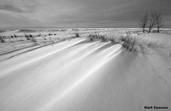 Wind Patterns (mswan777) Tags: winter bw white snow seascape black nature monochrome grass weather nikon wind wide sigma 1020mm ansel d5100
